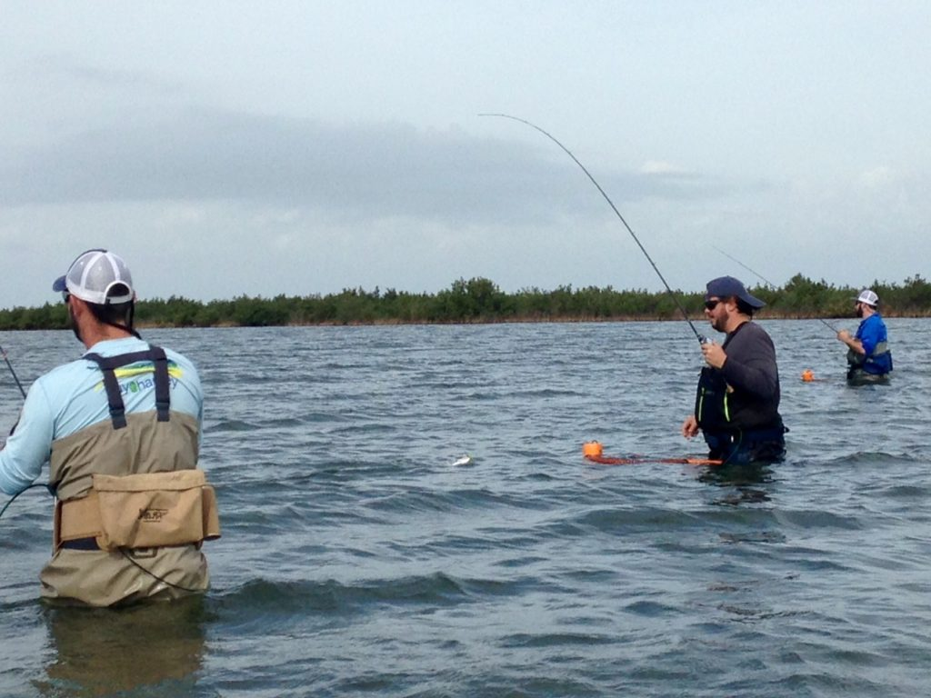 Capt nathan beabout fishing report texas outdoors for Tx fishing report