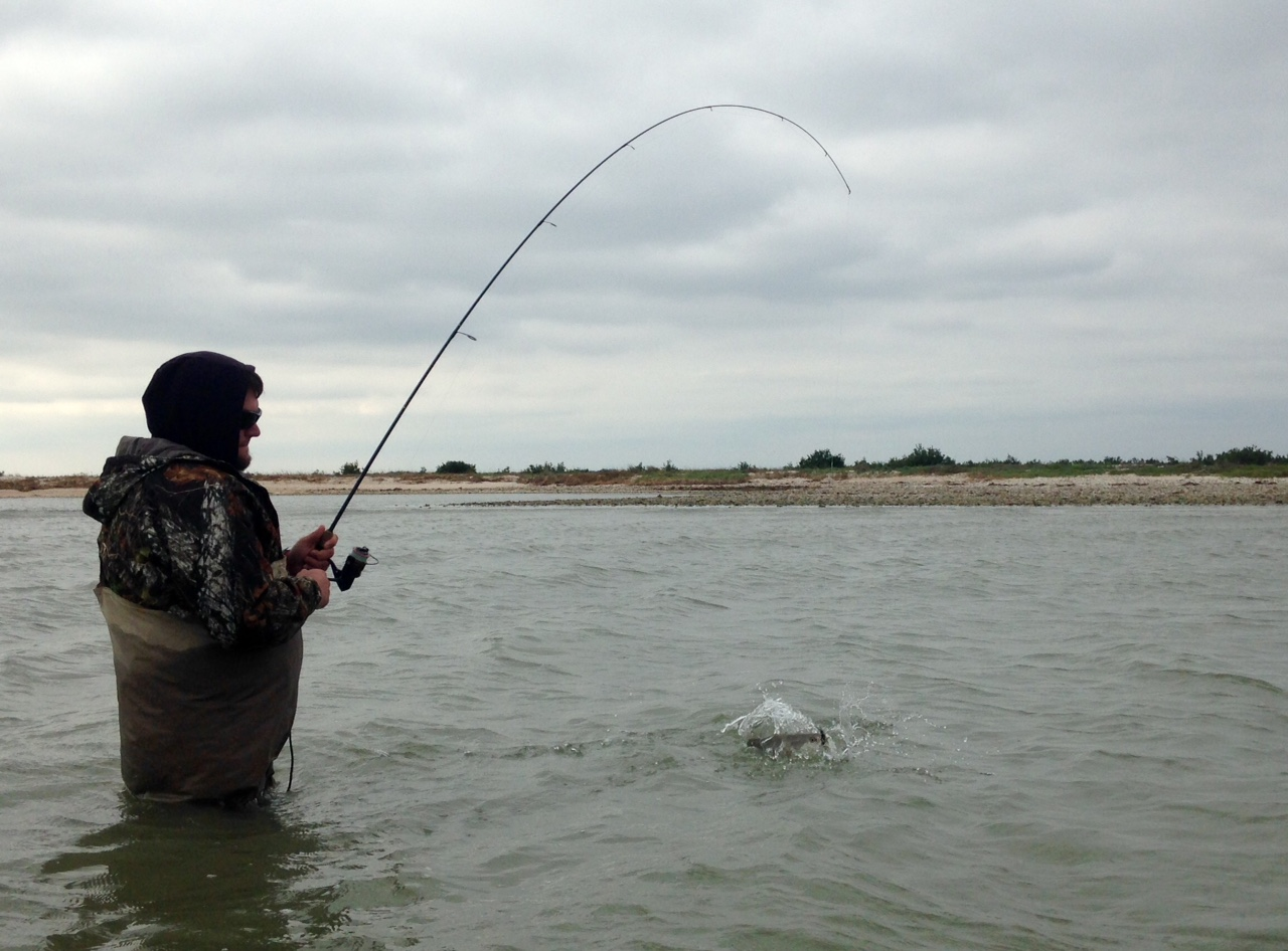 Capt nathan beabout wade fishing report texas outdoors for Fishing forecast for today