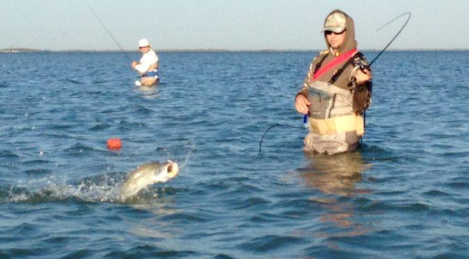 Winter Wade Fishing Report